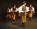 Prezentacje grup tańca ludowego, wokalnych i instrumentalnych w MDK