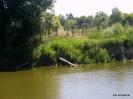 V Poleskie Rowerowe Safari